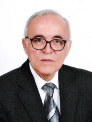 Prof.Dr. Cengiz YILMAZ