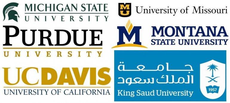 Erasmus+ ve Yurt Dışı Programlar
