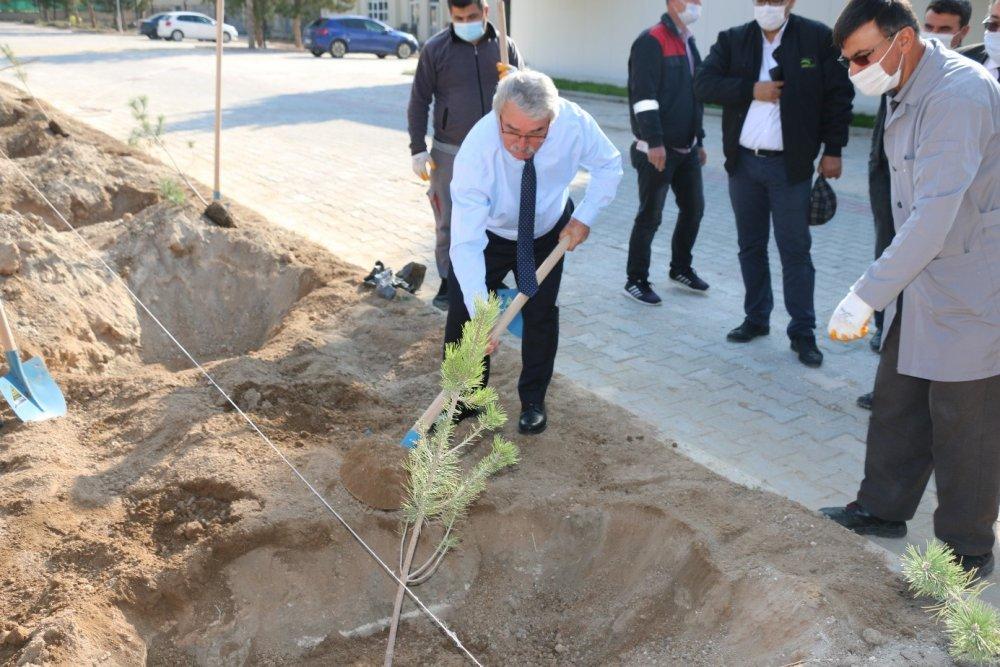 """""""Geleceğe Nefes"""" Ağaçlandırma Projesi Kapsamında Üniversitemiz Kampüsünde Fidan Dikim Etkinliği Gerçekleştirildi"""